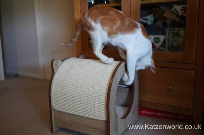 Katzenworld Catit Vesper0024