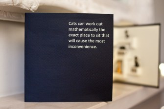Cats-Pop-Up-Card-Cover