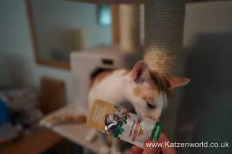Katzenworld Almo Nature Snack0002