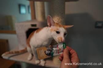 Katzenworld Almo Nature Snack0004