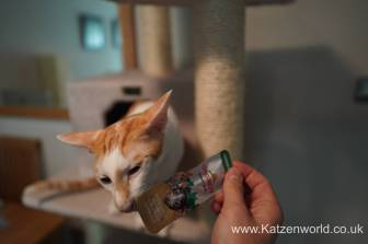 Katzenworld Almo Nature Snack0005