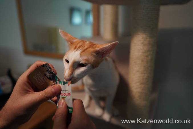 Katzenworld Almo Nature Snack0006