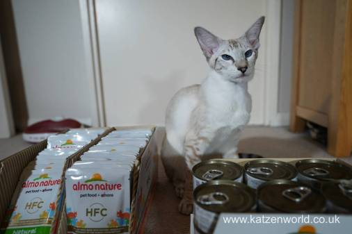 Katzenworld Almo Nature0008