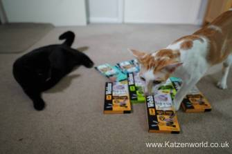 Katzenworld webbox cat treats0002