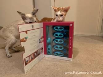 Katzenworld Doc and Phoebe0003