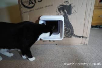Katzenworld SureFlap0020