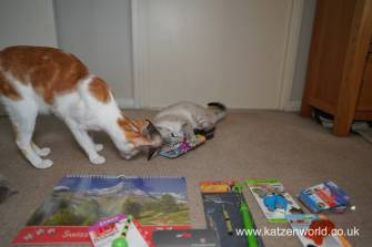 Katzenworld Christmas Stories0017
