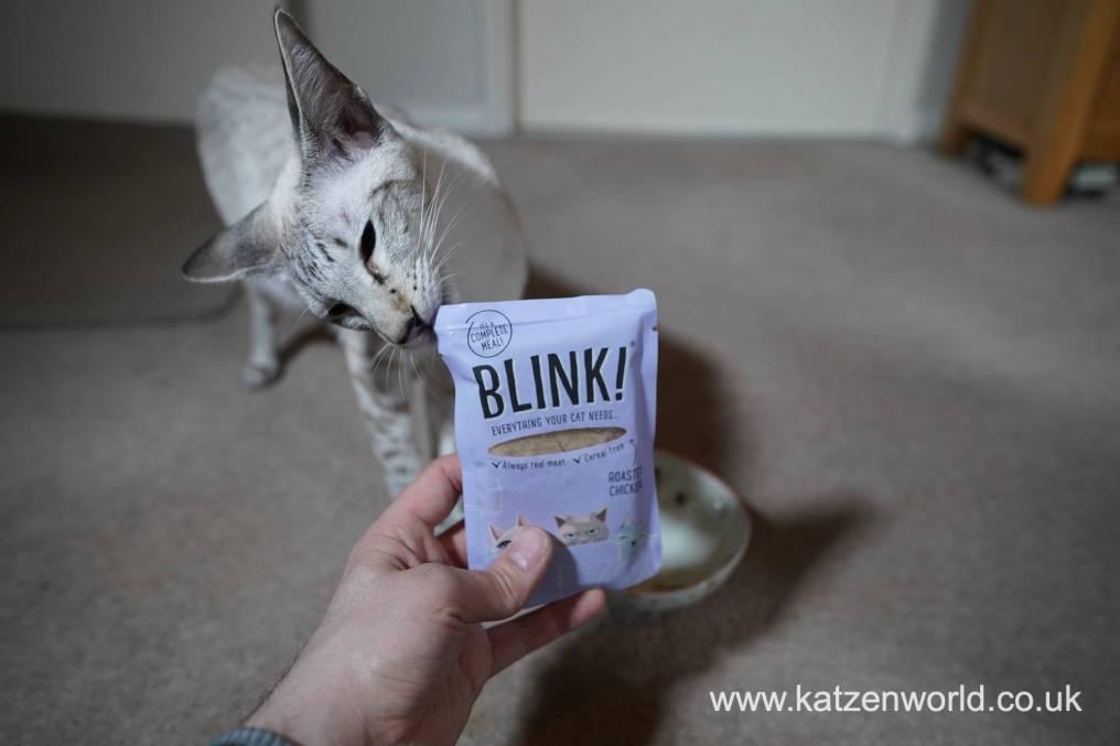 Blink! Katzenworld0004
