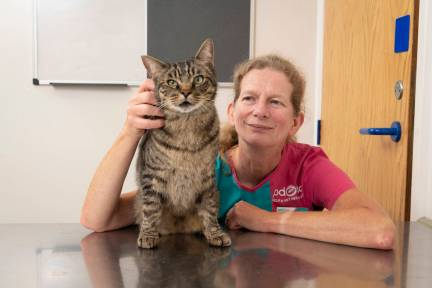 Loopie with PDSA Vet Jane Sedgewick