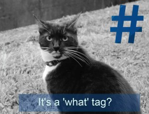 Make sure you use your hashtags when sharing a cool post or picture.