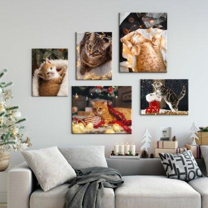 canvas wall cats