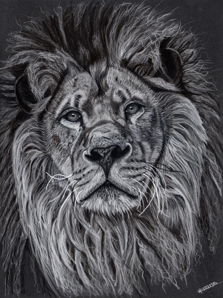 "Friday Art Cat: ""Lion"" by Reanne House"