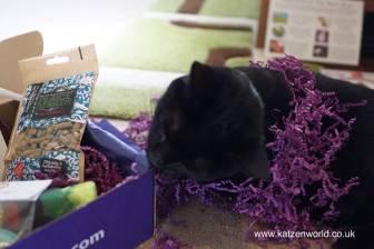 Purple! worms!!!!