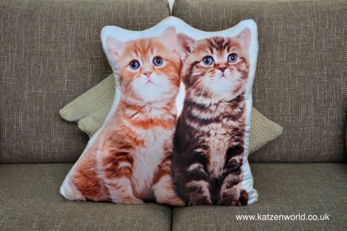 asc-1022-2-kittens-sofa