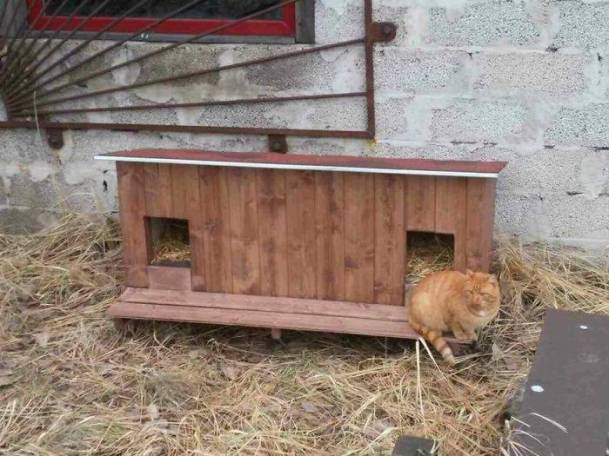 Outdoor-wooden-houses-for-homeless-cats-in-Riga-58b53f539fe08__700