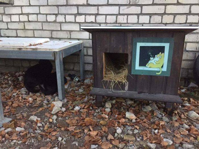 Outdoor-wooden-houses-for-homeless-cats-in-Riga-58b53f5802e43__700