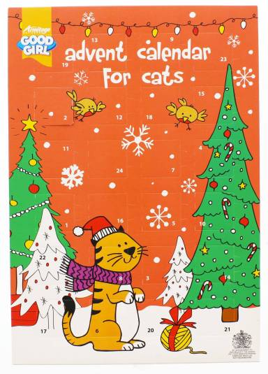 Advent calendar for cats - £1.29
