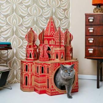 cat landmarks 2