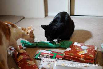 Christmas presents Secret Paw0007