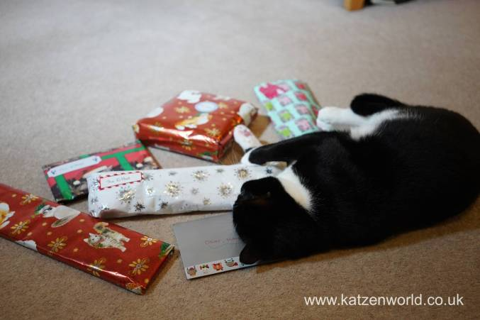 Christmas presents Secret Paw0013