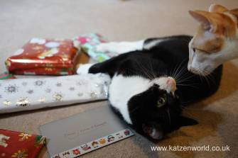 Christmas presents Secret Paw0017