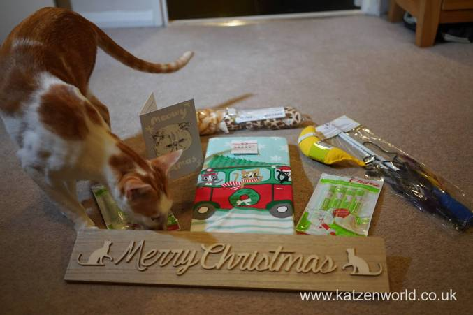 Christmas presents Secret Paw0022