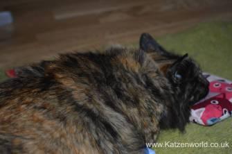 Katzenworld Louise story0002