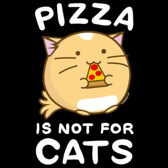 pizza-is-not-for-cats-1