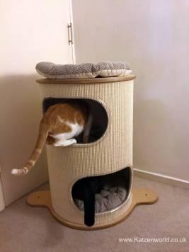 Rufi Scratch Tower0001