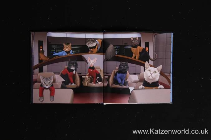 Katzenworld StarTrek Cats0008