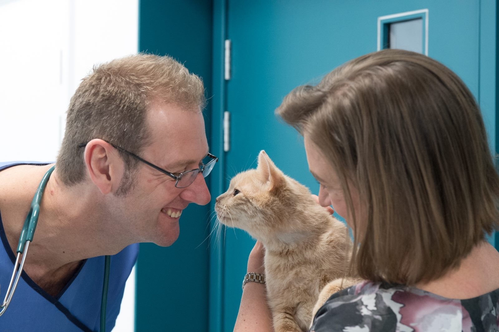 Happy Birthday to The London Cat Clinic for their 1st Anniversary