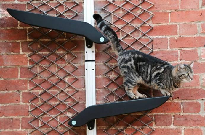 Katzenworld Catipilla0000