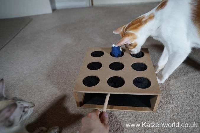 Katzenworld Whack-a-Mouse0002