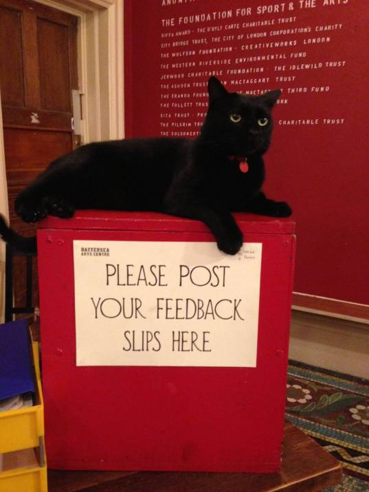 pluto on top of feedback box