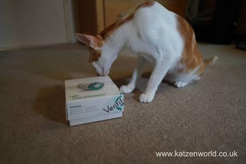 Katzenworld ventifresh 2