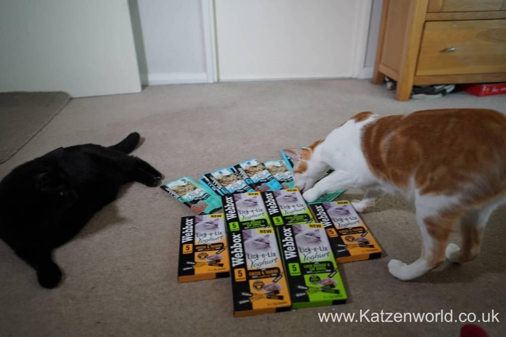 Katzenworld webbox cat treats0005