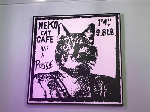 Neko-13