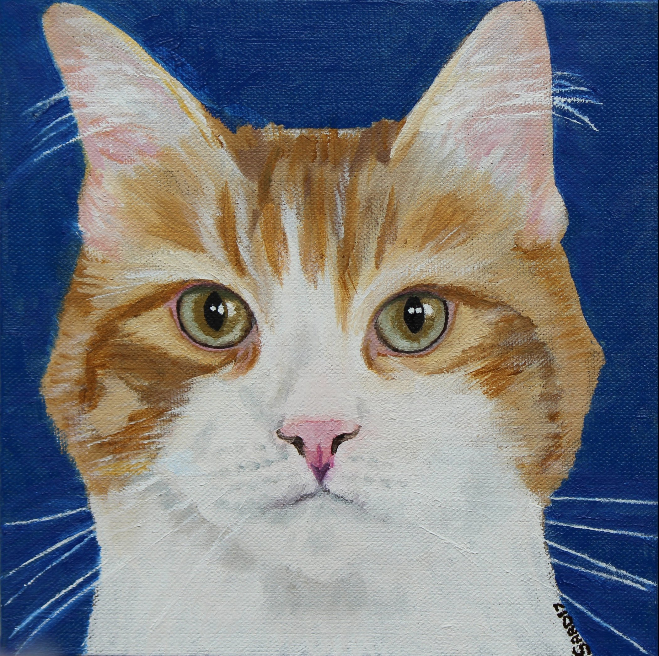 The Friday Art Cat: George the Turkish Van