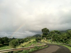 Kauai Kapahi Homes Rainbow