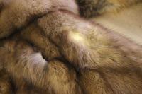 Moth Removal Fur Coats