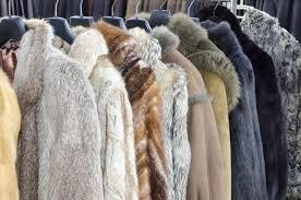 Fur Storage NYC