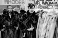 Fur Coat Cultural Dissonance