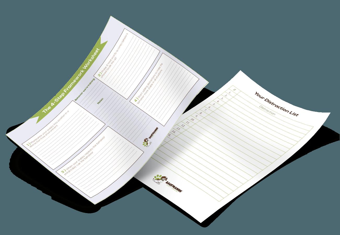 The 4 Step Framework Amp Distraction Worksheets Kaufmann S