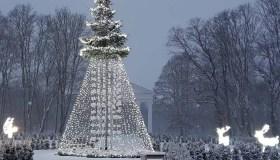 Jurbarko Kalėdų eglė