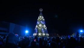 Marijampolės Kalėdų eglė