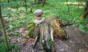Emerito Povilo Domeikos dėlionė iš akmenų
