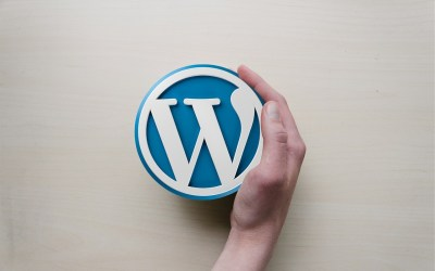Why WordPress is the Best Option for Small Business Websites