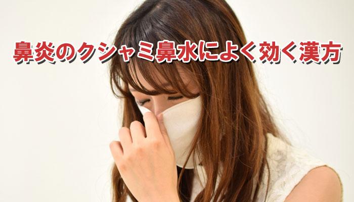 アレルギー性鼻炎のくしゃみと鼻水を治す漢方薬