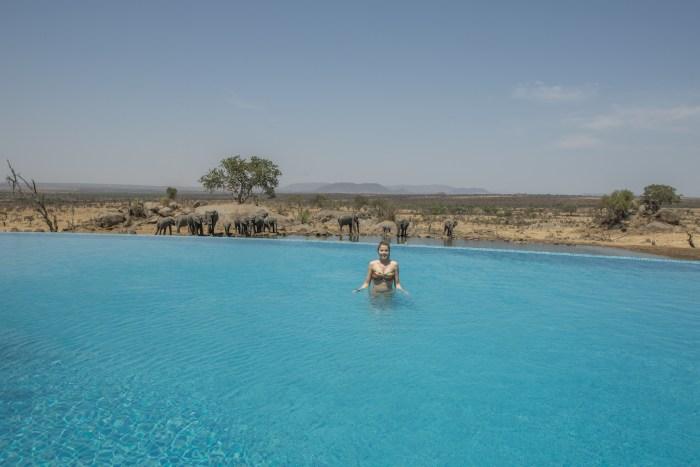 Piscina Serengeti