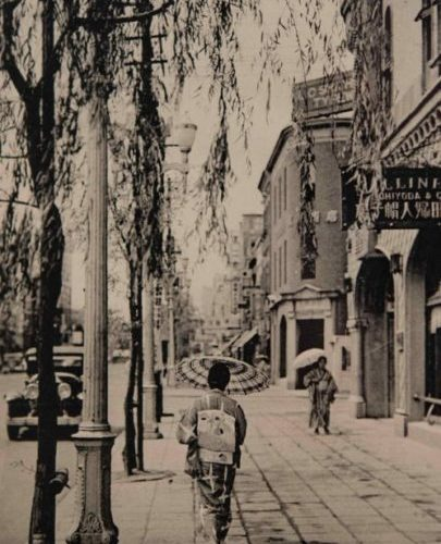 【20】堺の銀細工職人が植えた柳。江戸時代、江戸前島という砂州を埋め立て町人地として整備が行われた。1612年(慶長17年)に駿府にあった銀座役所が移転し、1800年(寛政12年)蛎殻町に再び移転するまで、銀貨の鋳造が行われた。「銀座」の由来である。その象徴である「柳」は、室町以降、貨幣制度を生んだ商工都市、堺から移住した銀細工職人が、故郷を懐かしんで移植したのが起源とされる。1874年(明治7年)日本初の街路樹として、最初は桜・松・楓が銀座通りに植樹された。3年後、埋立地だったため根腐れを起こし、湿地に生育する柳に植え替えられた。1921年(大正10年)には車道の拡幅にともない銀杏へと植え替えられたものの、銀座の柳に対する思いは強く、1929年(昭和4年)に発表された西條八十作詞『東京行進曲』でも銀座の柳をなつかしむ歌詞が登場する。1932年(昭和7年)朝日新聞社の寄贈で銀座通りに柳が復活し、柳まつりが開催された。その後『東京ラプソディ』『東京音頭』で歌われるなど、柳は銀座のシンボルとして定着していった。戦後、銀座の柳は1968年(昭和43年)撤去され、歩道が拡張された【20】1935年(昭和10年)頃・(東京名勝)情緒をそそる銀座の柳